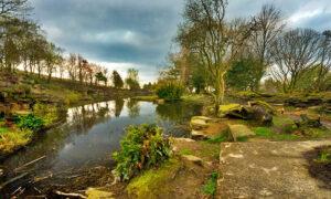 Rivington Gardens. Photo credit: dep
