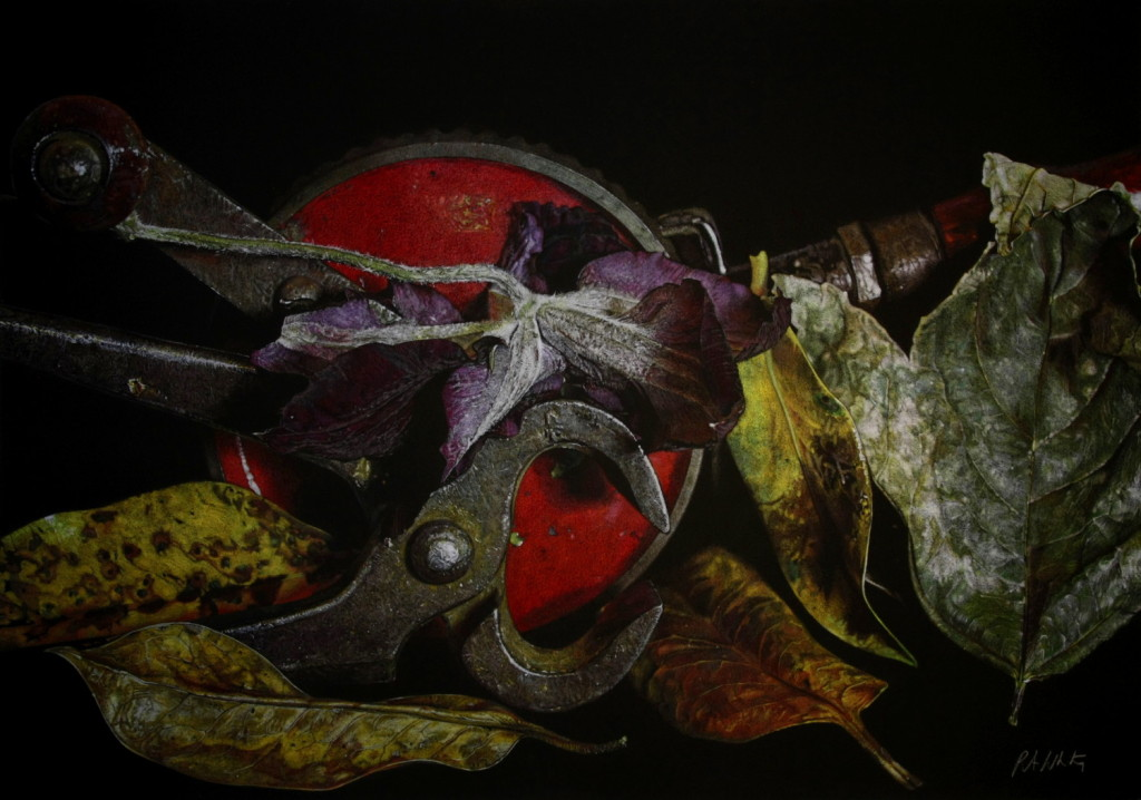 Patsy Whiting, Clematis leaves and Tools, 71x91cm, coloured pencil